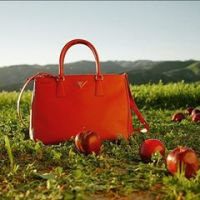 Prada Galleria Apple Red The Postman